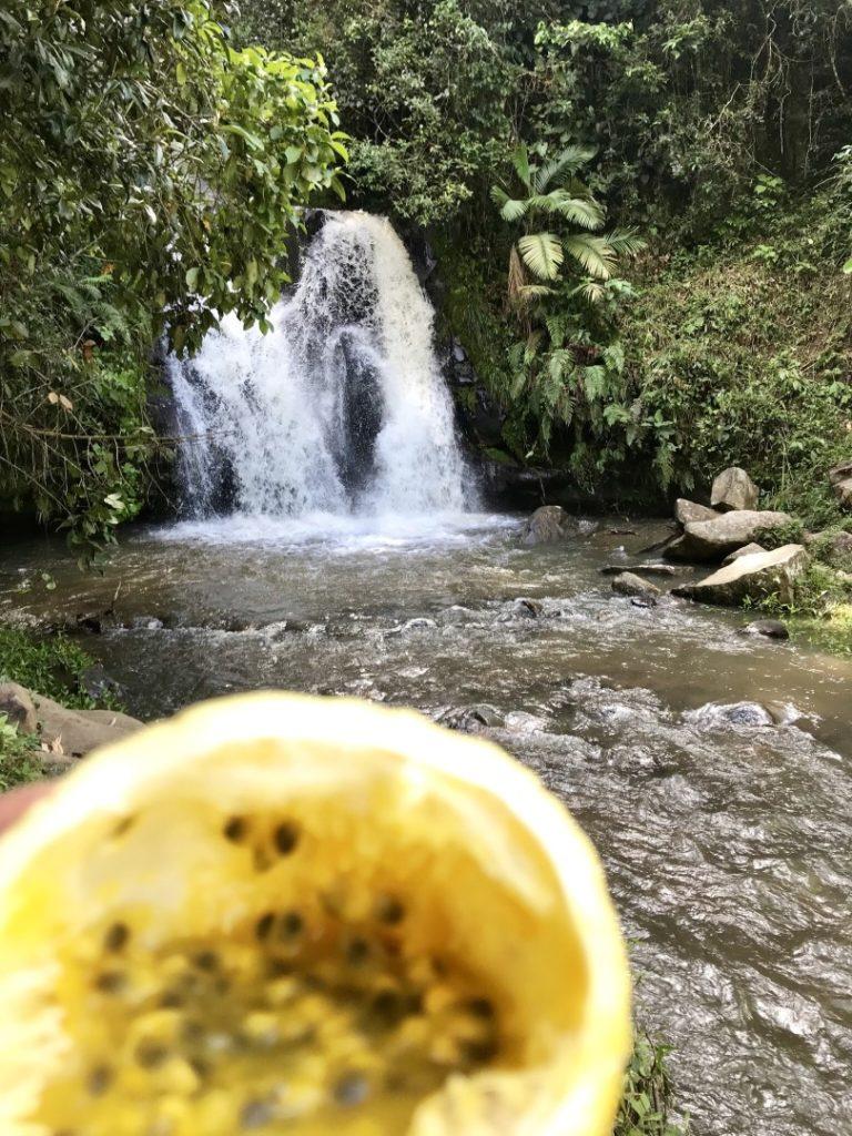 Waterfall of Guatape with passion fruit